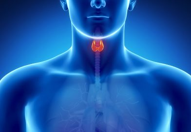 Thyroid Gland: Its Anatomy, Hormones, Functions and Disorders