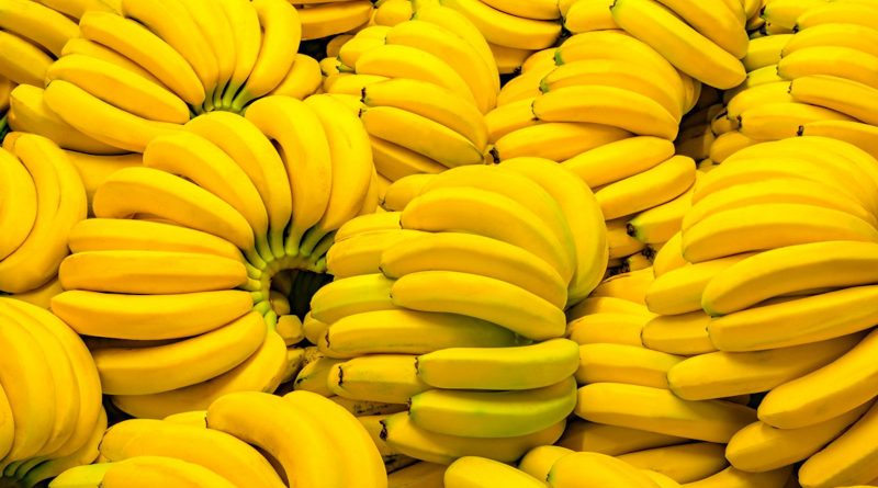 Are Bananas Good or Bad for You? Health Benefits and Risks